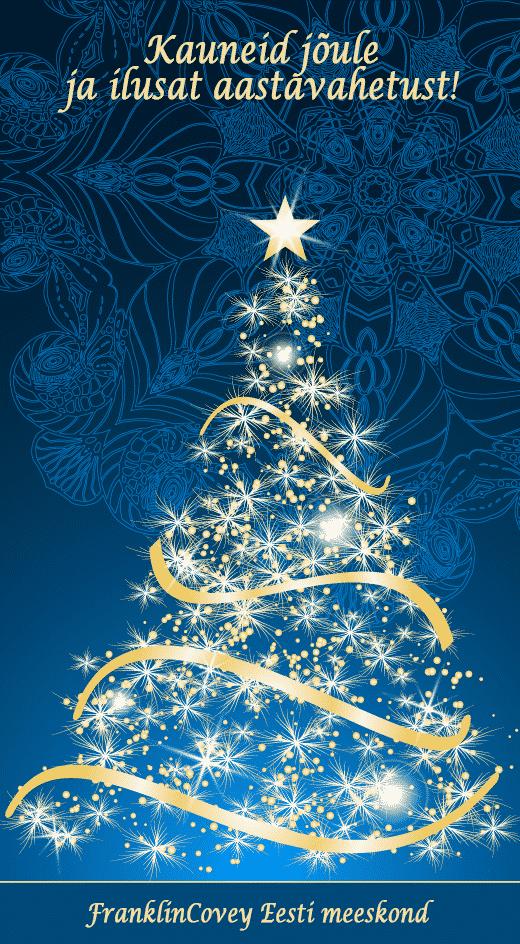 fce-joulukaart